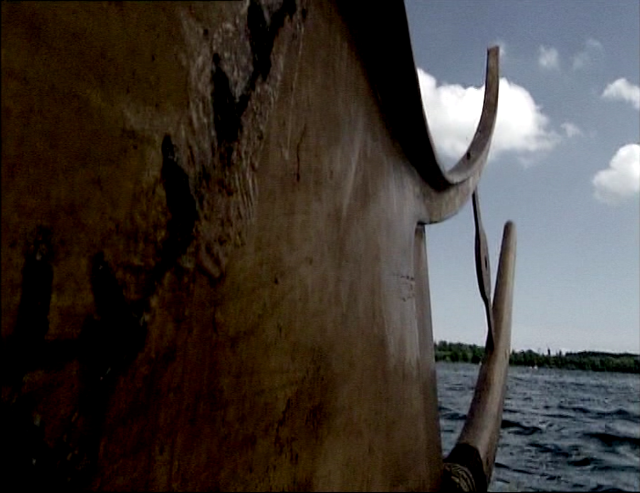 Et usædvanligt perspektiv af Tilia, med vores solsymbol mellem hornene.